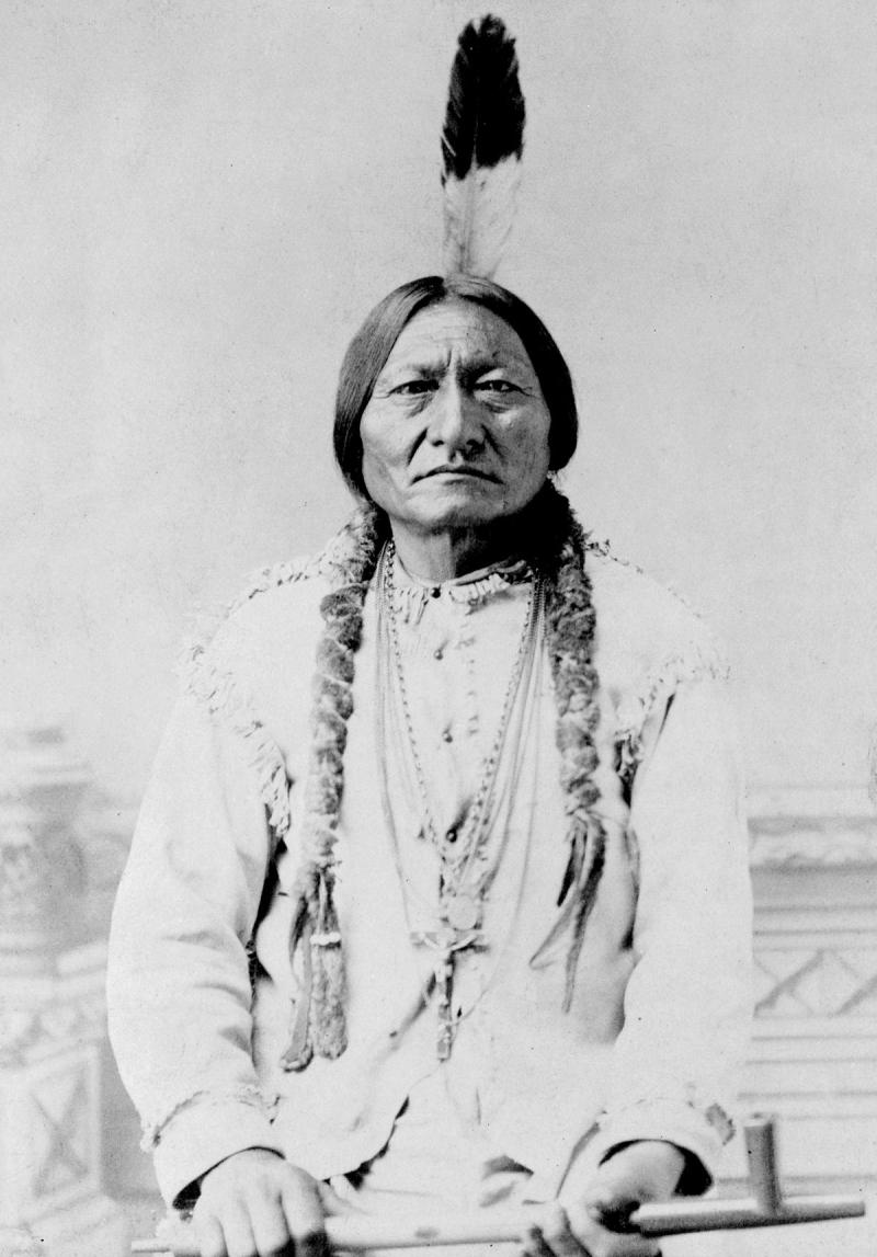 Sitting Bull, Tȟatȟáŋka Íyotake Photograph by David Francis Barry