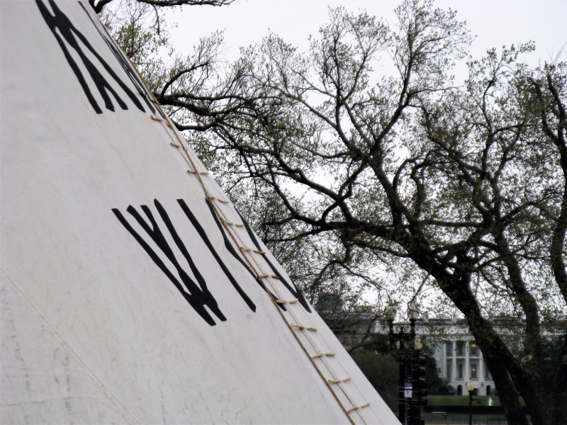 Tipi on the NW grounds of the Washington Monument, in front of the White House  Photo: Heather Rose Dominic