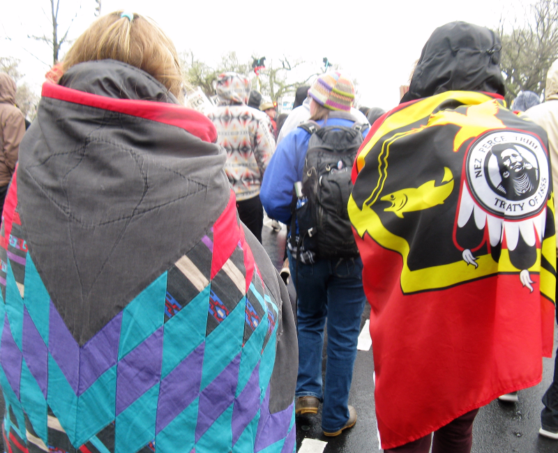 The Native Nations March on Washington  Photo: Heather Rose Dominic